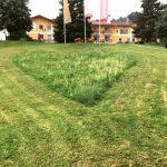Natururlaub mit Kindern im Bayerischen Wald